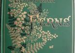 L'Abito del Libro, Mostra alla Biblioteca di Botanica, Firenze