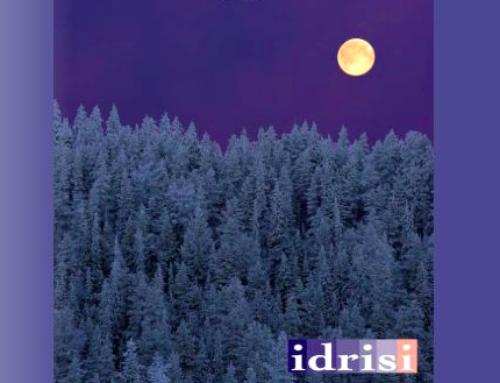 Muhammad al-Idrisi, il viaggiatore arabo che ispira il nostro software per l'ambiente