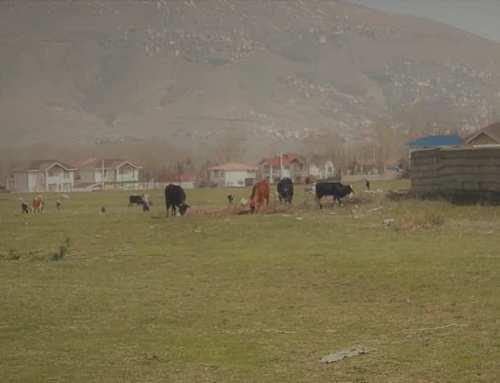Reportage Iran: Weekend in montagna attraverso la Chalus Road