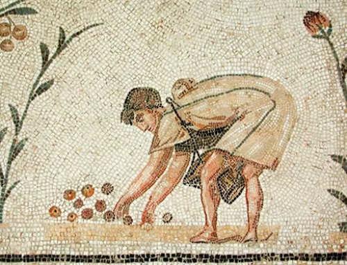 Sul valore dell'agricoltura nella letteratura romana